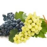Meglio l'Uva bianca o Nera