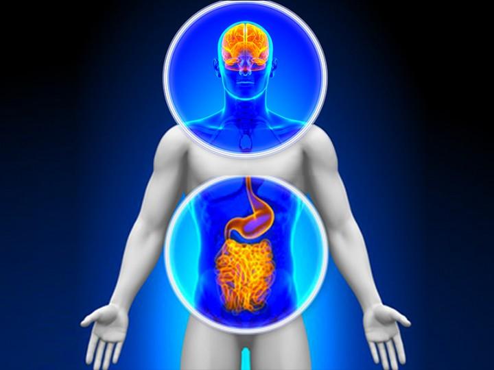 immagine-blog-aricolo-1-kg-di-batteri
