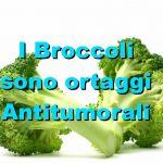 I Broccoli, ortaggi Antitumorali
