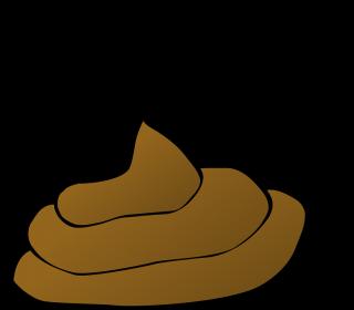 poop-34629_960_720