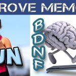 Attività Fisica e Omega-3 per rinforzare la Memoria
