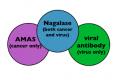 La Citochina Antitumorale e Antivirale GcMAF e la Nagalasi