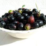 Gli Antiossidanti delle Olive Nere da Tavola