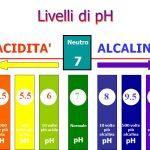 Cibi e Bevande Acidificanti per L'organismo