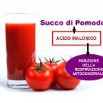 Acido Malonico contenuto in Certi Cibi favorisce il Cancro