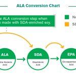 OMEGA 3: Differenza Tra ALA, EPA e DHA