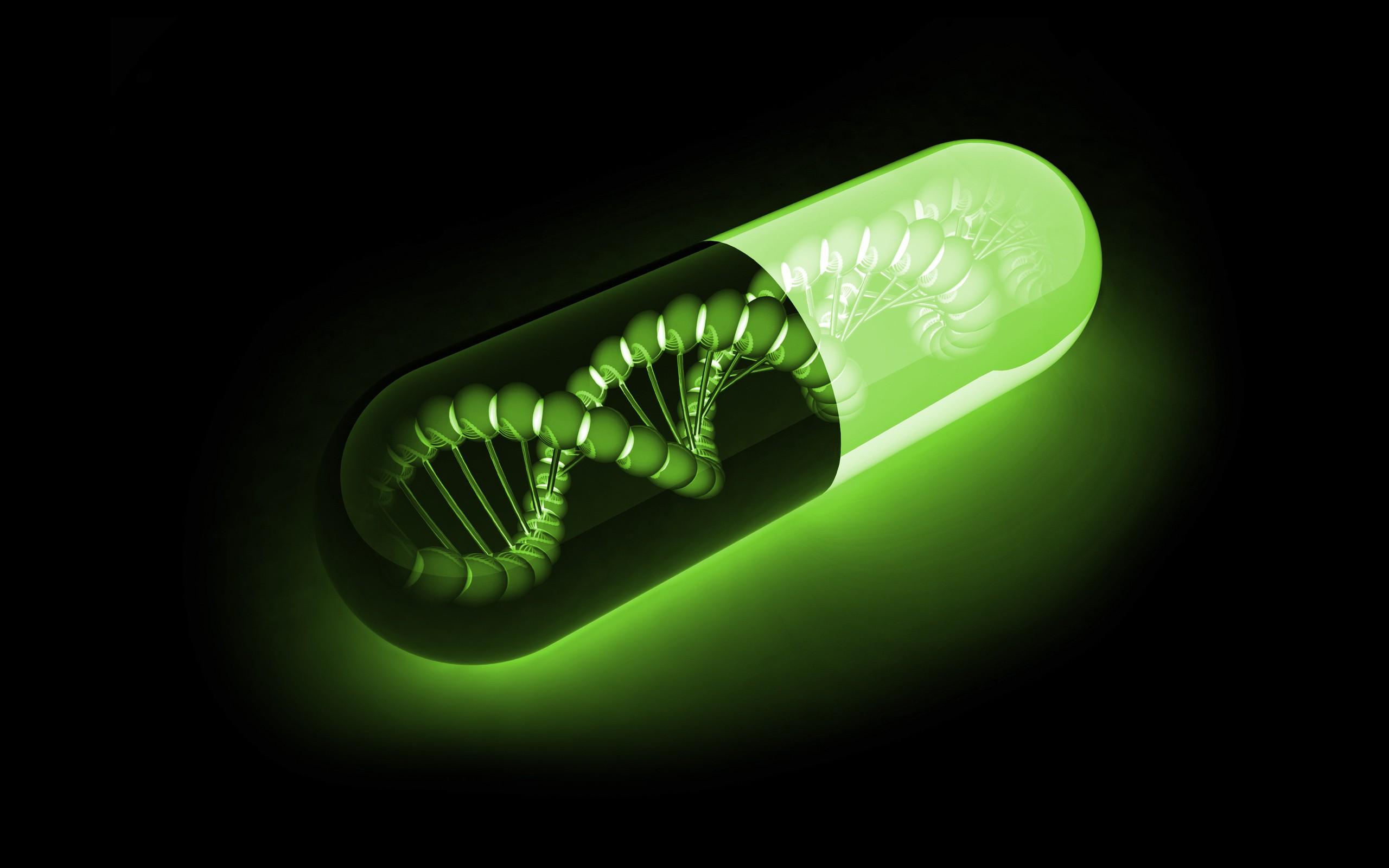 La Niacina (vitamina B3) contribuisce a Riparare il DNA