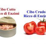 Alimenti Crudi: Fonte di Enzimi Digestivi