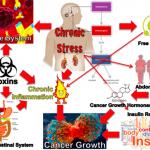 Cromo e Niacina Migliorano la Glicemia