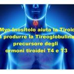Myo-Inositolo Fondamentale Per la Sintesi degli ormoni Tiroidei