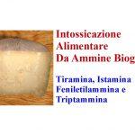 Intossicazione da Ammine Biogene di Alimenti Fermentati