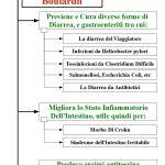 Saccharomyces Boulardii, Il Lievito Protettore dell'Intestino