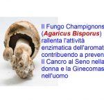 I funghi Champignons prevengono il tumore al seno
