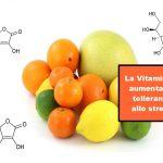 La Vitamina C aumenta la Tolleranza allo Stress