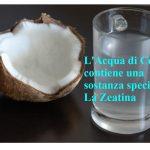 La Zeatina nell'Acqua di Cocco