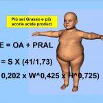 Più sei grasso e più produci scorie acide