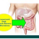 Il Microbioma Vittima dei Conservanti