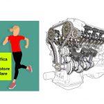 Analogia tra il Motore Cellulare e il Motore di un Automobile