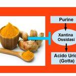 La Curcuma, Artrosi e Acido Urico