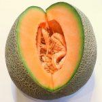 Melone Cantalupo ricco di SOD