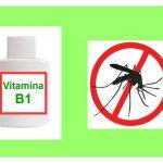 La Vitamina B1 che Allontana le Zanzare
