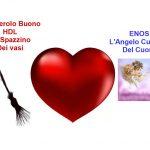 HDL e eNOS: Lo Spazzino e L'angelo Custode del Tuo Cuore