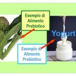 I Prebiotici Per l'Intestino