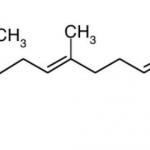 Il CoQ10: Si Trova nei Mitocondri