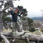 L'Albero Più Antico d'Europa nel Parco del Pollino