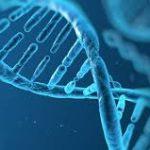 Sei Predisposto geneticamente All'Infiammazione?