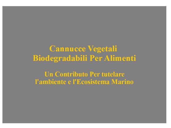 cannucce vegetali Biodegradabili per alimenti; un contributo per tutelare l'ambiente e l'ecosistema marino