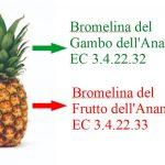 Bromelina e gli Artigli del Tumore