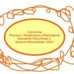 Curcuma Preventiva dei Tumori