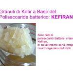 I Granuli di Kefir ed il Kefiran