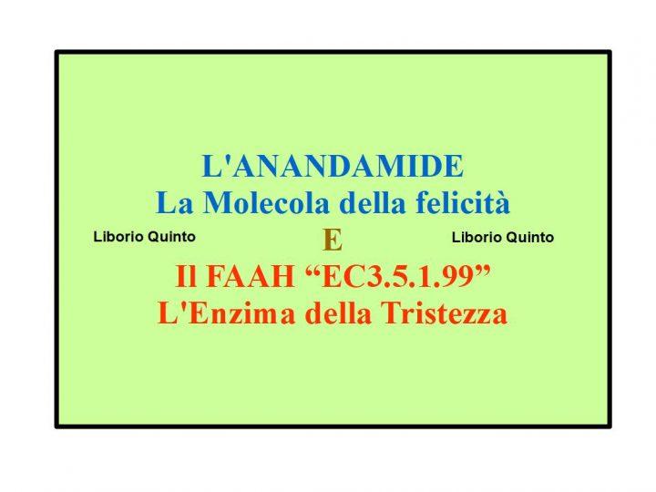 l'anandamide, la molecola della felicità e il FAAH, l'enzima della tristezza - di liborio quinto