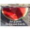 Anguria Antiossidante
