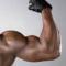 La Miostatina Inibitrice dei Muscoli