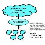 Peptidi Antipertensivi del Latte
