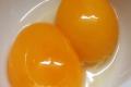 Olio d'Uovo