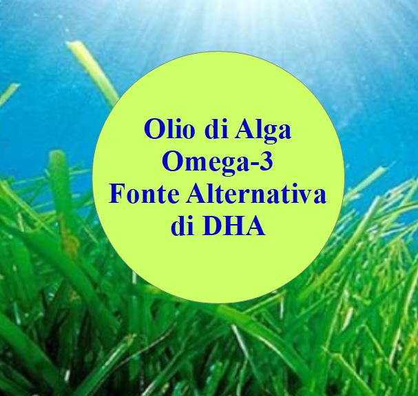 Olio di alga omega-3, fonte alternativa di DHA