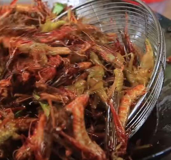 valore Nutritivo degli Insetti video sulla frittura delle cavallette