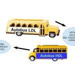 Gli Autobus del Colesterolo