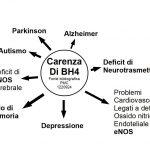 Il BH4: Mette in Moto il Cervello
