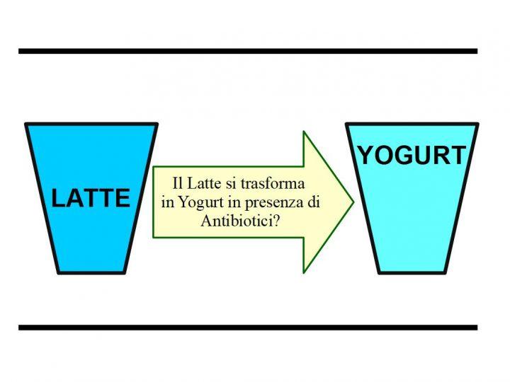 Lo Yogurt può Contenere Antibiotici?