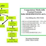 Le Sieroproteine del Latte