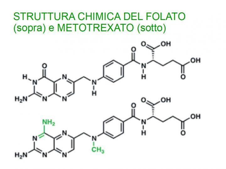 Vitamina B9: L'acido Folico è Sintetico?