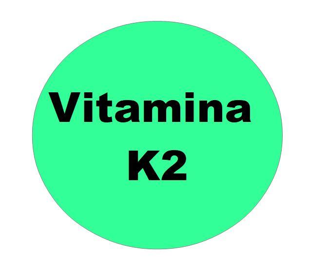 Perché i Batteri producono la Vitamina K2?
