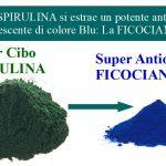 Ficocianina: L'Antiossidante Blu