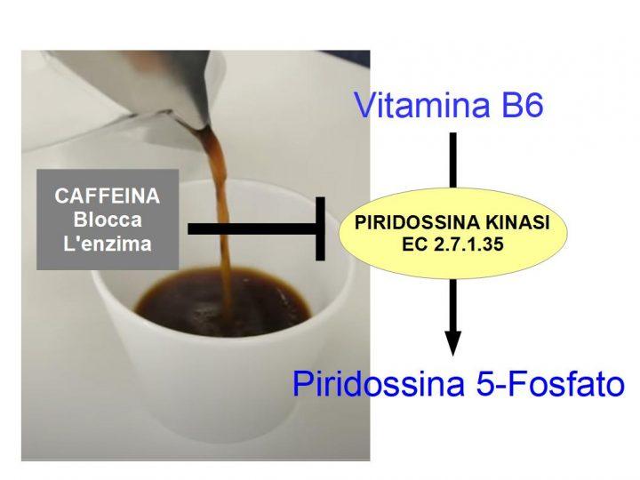 La caffeina inibisce la Vitamina B6