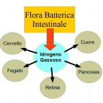 Idrogeno Intestinale e Salute